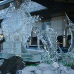 真冬の信濃路Ⅰ「氷点下のアロハーマン」