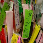7月7日は七夕!お笑い爆笑短冊を大発見!
