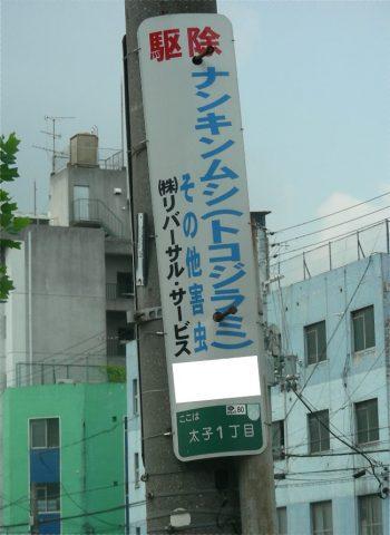 南京虫 西成・釜ヶ崎