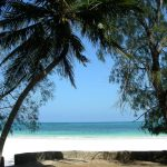 ケニア入国!常夏のビーチとバンガローで超極楽生活、開始!
