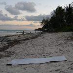 海岸に突如、マサイ族あらわる!~極安バカンスはどんな日々?