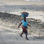 モザンビーク・海岸線沿いを南下する マシシェ・シャイシャイ