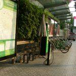 バンコクを自転車(ママチャリ)で走ってみた結果