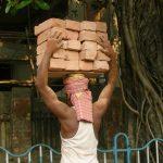 インド一周後はどう生きる?身の振り方とビジネスのタネ